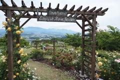 信州国際音楽村にて(4)