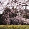 穏やかな春景