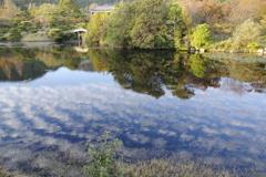 湖面をゆく秋
