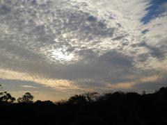 秋空と雲に想いを馳せる