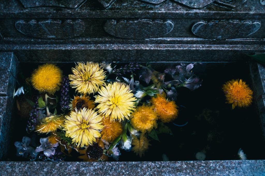 供花 #2