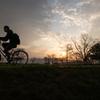 夕焼け自転車