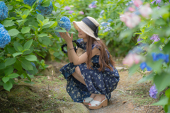紫陽花との戯れ