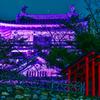 浜松城公園ピンクリボンキャンペーン