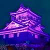 浜松城ピンクリボンキャンペーン