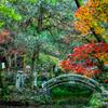 鳴谷山 聖宝寺 紅葉