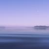 西印旛沼-朝景
