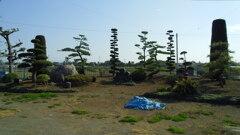 2013/04/13_鳥羽井沼自然公園