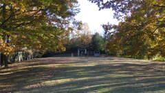2013/11/30_トロッコ公園?