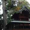 2013/01/05_小室氷川神社 本殿と杉