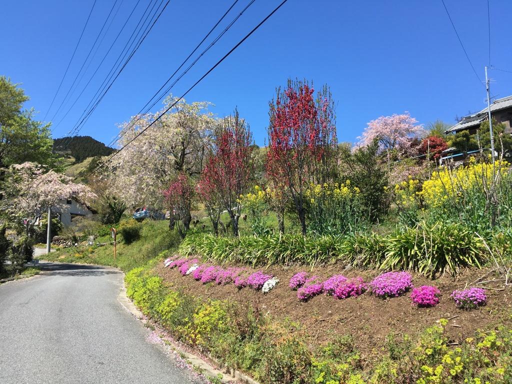 2020/04/19_花桃の郷