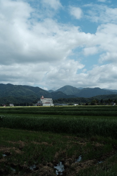 米の移動先