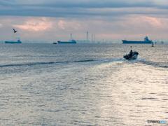 Appleリコメンド 浦安沖風景 鳥 遠くの船 近くの船 波紋