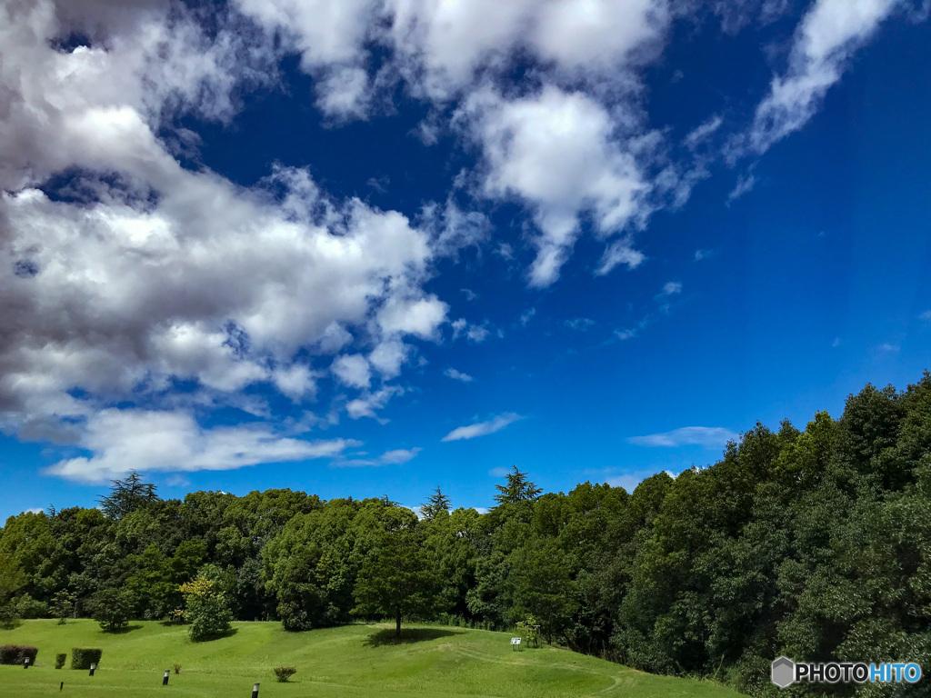ひさびさに見た青い空