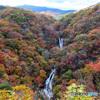 紅葉絢爛 霧降の滝