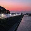 桜シーズン振り返り 浦安境川沿い夕桜 補正あり