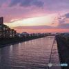 今日の夕空は桜色でした。浦安境川 夕景