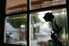 カフェの窓より