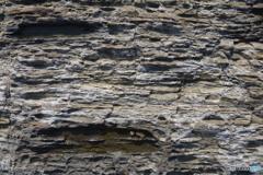 波状岩と水たまり