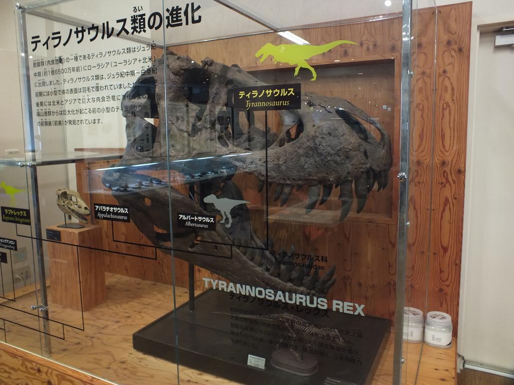 ティラノサウルス(T-REX)