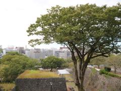 熊本城 その18