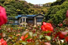 鎌倉文学館 IMG_0619