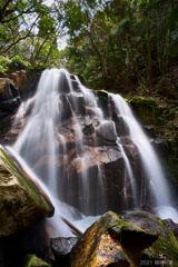 鶏鳴の滝 春 岩