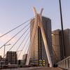中央大橋を仰ぐ-右がわ 塔とケーブル
