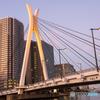 中央大橋 夕方 西日とライティング