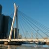 中央大橋 昼景 午後の日差し