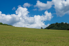 若草山 麓の景色その2