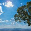 若草山山頂からの景色その3