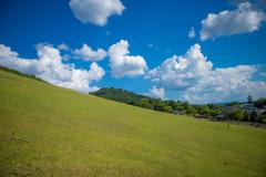 若草山 麓の景色その1