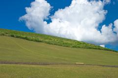 若草山 麓の景色その4