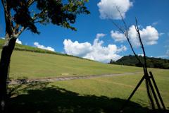 若草山 麓の景色その3