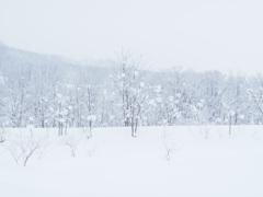 天も地も真っ白