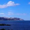 春の神威岬