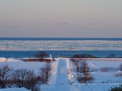 流氷へ一直線