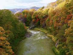 色づく谷川