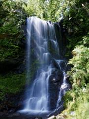 美深 深緑の滝 その1