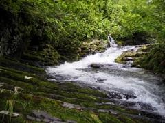 美深 女神の滝上流