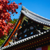 Add color to the autumn season