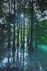 Sufficient water volume [Revisit]