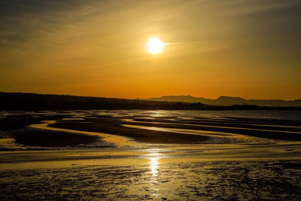 夕陽101