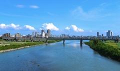 夏の多摩川