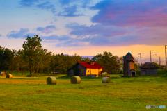 夕映え牧草ロール