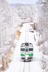 雪花 -sekka-
