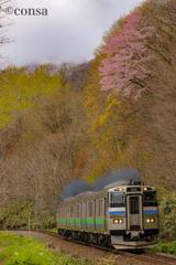 春と鉄道 〜山桜の下を黒煙上げて〜