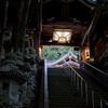 早朝の神社 石段