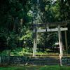 神社2(フィルム)